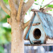 Bird House on a tree - Stock Photo