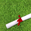 Diploma wrapped with a red ribbon on fresh spring green grass — Lizenzfreies Foto
