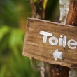 A wooden sign hung over the entrance to a toilet — Stock Photo #26957181