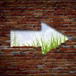 Brick wall with up arrow ,grass and sky. — Stock Photo