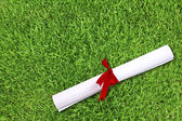 Diploma wrapped with a red ribbon on fresh spring green grass — Stock Photo