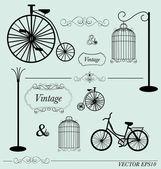 Vector reeks van vintage designelementen, kan worden gebruikt voor muur stic — Stockvector