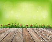 Natural background. Fresh spring green grass with red flower and — Stock Vector