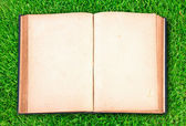 Vintage book on green grass — Stock Photo