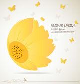 Vintage floral achtergrond - madeliefjes. vectorillustratie. — Stockvector