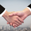 Two business man shaking hand — Foto Stock