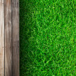 Fresh spring green grass with wood floor — Stock fotografie