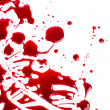 Halloween concept : Blood splatter on white background — Stock Photo