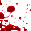 Stock Photo: Halloween concept : Blood splatter on white background