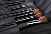 Set of cosmetic paint brush for makeup — Stock Photo