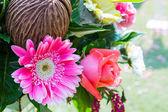 Trauung in einem schönen Garten — Stockfoto