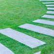 The Walk path in the park with green grass — Stock Photo #37140301
