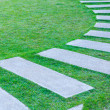 The Walk path in the park with green grass — Stock Photo