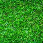 Artificial green grass background texture — Stock Photo