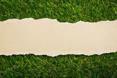 Ripped recycled paper on green grass background — Stock Photo