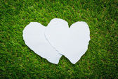 Two heart paper on green grass background — 图库照片