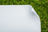 Blank paper on green grass background — Stock Photo