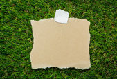 Blank recycled note paper on green grass background — Stock Photo