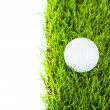 Stock Photo: Golf ball on green grass over white background