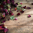 Dried rose on old wood background — Stock Photo