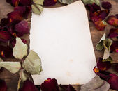 Vintage paper and dried rose — Stock Photo