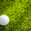 Golf ball on green grass — Stock Photo #41229367