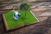 Open grass book with wind turbine,solar cell,tree and earth on w — ストック写真