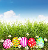 Easter Eggs with flower on Fresh Green Grass with blue sky — Stock Photo