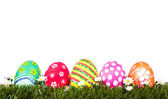 Easter Eggs on Fresh Green Grass over white background — Stock Photo