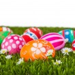 Easter Eggs with flower on Fresh Green Grass over white backgrou — Stock Photo #43915819