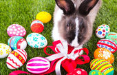 Rabbit and easter eggs in green grass — Stock Photo