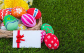 Basket of easter eggs with card on Fresh Green Grass — Stock Photo
