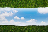 Ripped paper on green grass and blue sky — Stock Photo