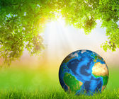 Green Earth on Fresh spring green grass with green leaf (Element — Stock Photo