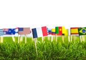 Papper skära av flaggor på gräs för fotboll 2014 — Stockfoto