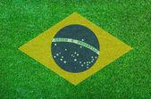 Brazil grass of Soccer championship 2014 — Stock Photo