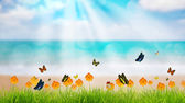 Fresh spring green grass with butterfly and flower near beach, S — Stock Photo