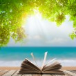Open book on wood floor with green grass and leaf over beach sea — Stock Photo #48706981