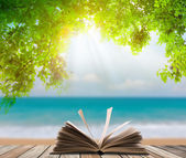 Open book on wood floor with green grass and leaf over beach sea — Foto Stock