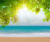 Green leaf and tropical beach — Stock Photo