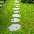Flagstone path in home garden — Stock Photo #49817109