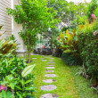 Flagstone path in home garden — Stock Photo #49817135