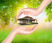 House on woman hand over Green leaf  background — Stock Photo