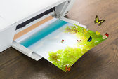 Printer with green leaf and butterfly , Summer time — Stock Photo