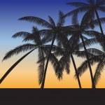 Tropical beach — Stock Vector #19558937