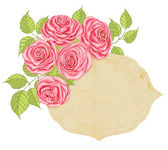 Roses and label — Stock Vector