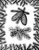 Barnches šišky borovice a jedle rám — Stock vektor