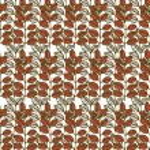 Autumn leaves — Stock Vector #48372853