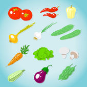 Set of various vegetables — Stock Vector