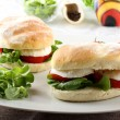 Sandwiches with mozzarella, tomato and lettuce — Stock Photo #13572133